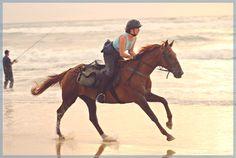 September 2007 on Mimizan beach . Western France
