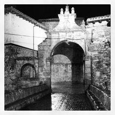 #myinstagram365proyect dia017 #portazgo's bridge #aguilardecampoo #lluvia #rain #puentedelportazgo #igerscyl #igerspalencia