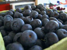 Blueberry babies by Jennie Faber, via Flickr