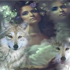 american indian and wolves images | uploaded to pinterest
