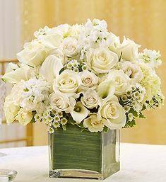 Google Image Result for http://media1.1800flowers.com/800f_assets/images/flowers/images/shop/catalog/95290z.jpg