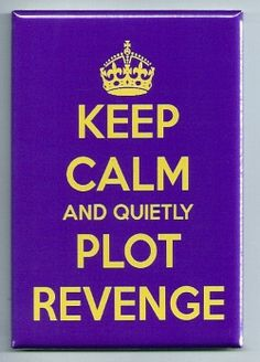 Keep Calm And Quietly Plot Revenge - FRIDGE MAGNET - funny quote carry on #Collectible
