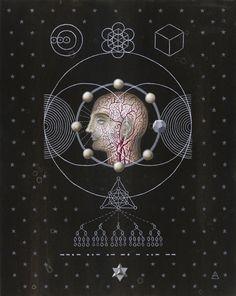 The Art of Daniel Martin Diaz / Anatomical <3