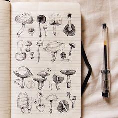 New Plants Drawing Doodles Art Ideas Illustration Inspiration, Plant Illustration, Sketchbook Inspiration, Journal Inspiration, Journal Ideas, Flower Yellow, Arte Grunge, Tag Art, Mushroom Art