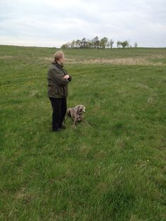 Positive Gun Dog Training >>> You can get more details by clicking on the image. #DogTraining