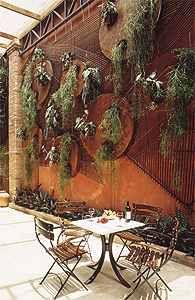 Globo.com. O grande muro amarelo, cor que recobre toda a fachada, foi cenário para o plantio de três Euphorbias, que florescem intensamente no inverno trazendo o branco ao jardim. Rente ao chão, musgos emolduram o conjunto, que recebeu também uma paliçada de bambus: ao final, o toque oriental foi reforçado. Nos 12 m2, como no restante da casa, o Feng Shui acabou indicando algumas escolhas, como a cor das paredes, o sino-dos-ventos e plantas de formas arredondadas, simbolizando o progresso