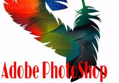 There are many photo editing software around us.Here's the article about best photo editing software.we will find your best photo editing software in here.