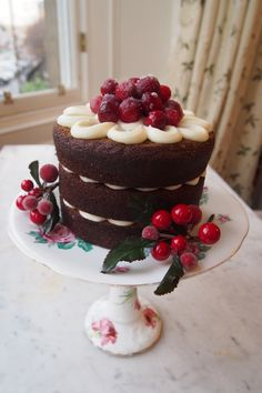Gingerbread Cake with Frosted Cranberries