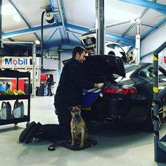 Geordie our company dog is keeping an eye on proceedings today. #bossman #Porsche #nomessing #capheatonterrier #dogsofinstagram #instadog