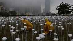 - Chineses trabalham na montagem de uma instalação de arte com 25 mil rosas brancas com luzes de LED, para a celebração do dia dos namorados. Foto: Kin Cheung / AP