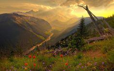 Картинка Волшебная долина