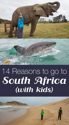 14 Reasons to go to South Africa (with kids)