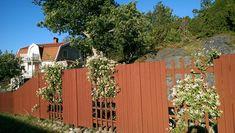 Trädgårdsplank - 1 idéer till ditt hem Fence Design, Garden Design, Lawn And Garden, Home And Garden, Garden Gadgets, Dream Garden, Garden Inspiration, Garden Landscaping, Pergola
