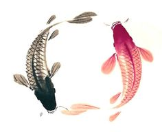 the meaning of KOI  http://reneefinberg.blogspot.com/2008/10/meaning-of-koi.html