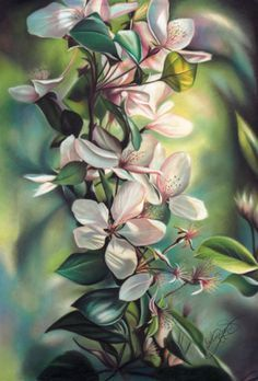Learn Lee Hammond's colored pencil techniques at ArtistsNetwork.com! ^ch #drawing #coloredpencil