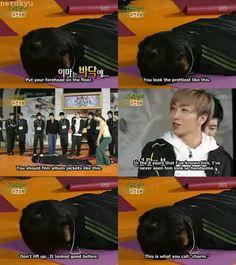 Hahaha our leader so dork ㅋㅋ