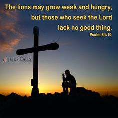 The lions may grow weak and hungry, but those who seek the Lord lack no good thing. Psalm 34:10