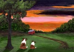 Dawn Sheltie Dog print by Todd Young by ToddYoungArt on Etsy, $13.50
