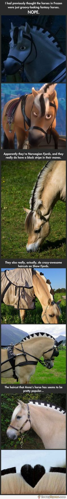 Horses with manes cuts like in Frozen