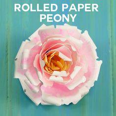 Rolled Paper Peony Flower Tutorial (Quilling) via Paper Quilling Flowers, Paper Flowers Diy, Flower Crafts, Diy Paper, Paper Crafts, Paper Art, Paper Sunflowers, Paper Peonies, Rose Tutorial