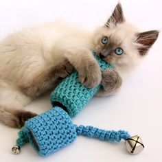 Easy to Crochet Cat Toy with toilet paper tube base - DIY by Dabbles & Babbles