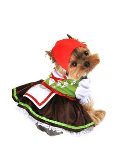 Alpine Girl Dog Costume by Anit at Gilt