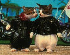 Motorcycle kittens!