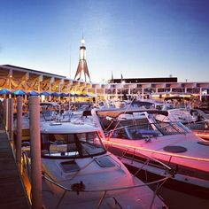 We're anxious for warm summer nights, how about you? #tinfish #tinfishscs #stclairshores #theshores #lake #lakestclair #boating #boats #marina #summer #jeffersonbeachmarina