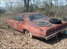 Super Bee ... sad to see these great cars fallin' apart