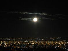 Silêncios da noite