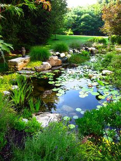 Water Features | Absolute Landscape and Turf Services, Inc.
