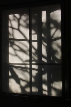 Black And White Photograph - Blind Shadows by Denise Clark Window Shadow, Sun Shadow, Shadow Play, Girl Shadow, Black Shadow, Aesthetic Pastel Wallpaper, Aesthetic Backgrounds, Aesthetic Wallpapers, Light And Shadow Photography