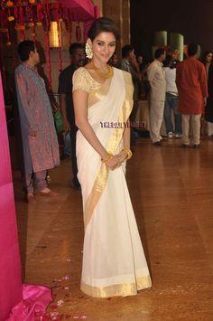Asin at Genelia and Riteish's wedding - I love her sari!