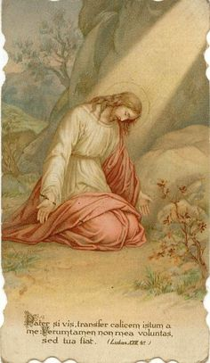 Agony in the Garden God and Jesus Christ Religious Pictures, Jesus Pictures, Christian Posters, Christian Art, Catholic Art, Religious Art, Rosary Mysteries, Agony In The Garden, Vintage Holy Cards