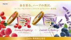 Novos sabores de sorvete da haagen-dazs