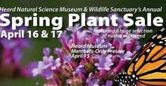 For more than 20 years veteran and novice gardeners alike have anticipated this rare opportunity to purchase plants from a huge selection of the best plants for North Central Texas gardens at the annual Spring Plant Sale. This year we are offering natives hard-to-find herbs and well-adapted plants.