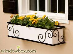 The Scroll Window Box Cage (Square Design) - 47.9700