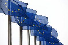 """Ob Deutschland in der EU bleiben sollte - 91 Prozent der Leser von  sciencefiles.org  sagten """"nein""""."""