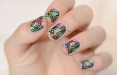 Neon Rainbow Tropical