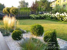 Tosi's garden – page 329 – Garden forum – Garden - Bepflanzung Small Front Gardens, Back Gardens, White Pebble Garden, Garden Forum, Japan Garden, Minimalist Garden, Garden Deco, Garden Landscape Design, White Gardens