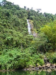 Wundervolle Landschaft mit Wasserfall auf den Fidschis #fiji #fidschi #wasserfall #waterfall #natur #nature #palmen #landschaft #vegetation #grün #insel #paradise