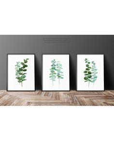 Conjunto de 3 plantas acuarela ilustración botánica lámina
