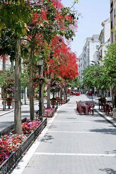 La Calle Real es una de las vías peatonales más importantes de Estepona, municipio de la Costa del Sol.