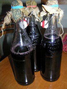 lacto-fermented grape soda