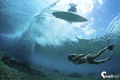 Maldives Surf Report - September - surf photos by Richard Kotch Galleries