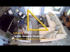 Brandon is teaching you his house training triangle!