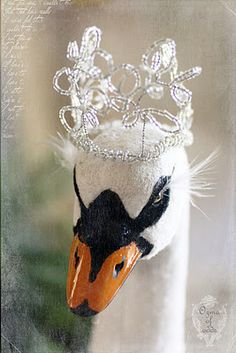 """.In Celtic lore, Swan is associated with Otherworldly travel and migration of the Soul. The """"swan song"""" speaks of both grace and beauty (because Swan's final song is said to be strikingly beautiful) and also of death and transition. Swan is often the poetic representation of the Soul itself in Celtic lore"""