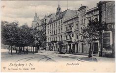 Königsberg (Ostpreußen) Калининград Geschäfte Paradeplatz Ansichtskarte 1905 | eBay