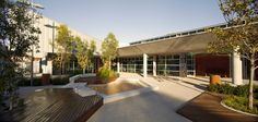 Cranbrook Junior School by ASPECT Studios « Landscape Architecture Platform Courtyard Landscaping, Wooded Landscaping, Courtyard Design, Garden Design, Landscape Architecture Design, School Architecture, Landscape Architects, Contemporary Landscape, Urban Landscape