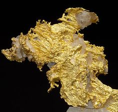 Oro nativo con Cuarzo.